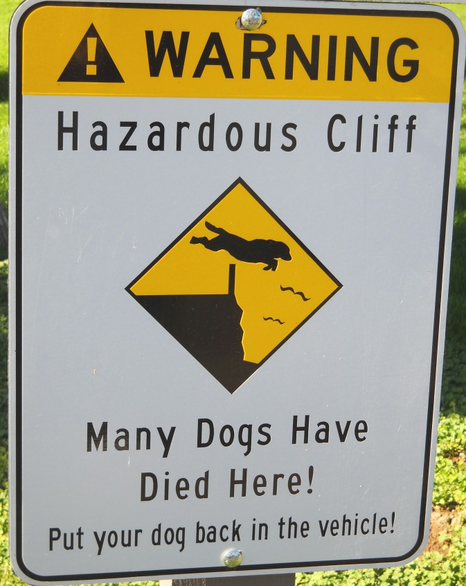 Dog Cliff Warning