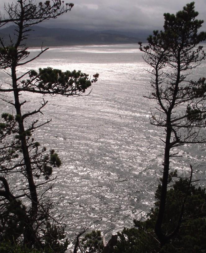 kiwanda-distant-cliff-top