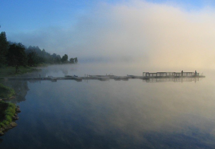 SilverCr Dock Mist