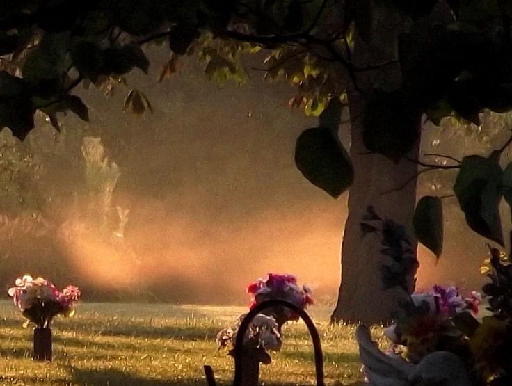 Cemetery Floating Mist