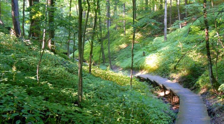 Hampton Hills Path