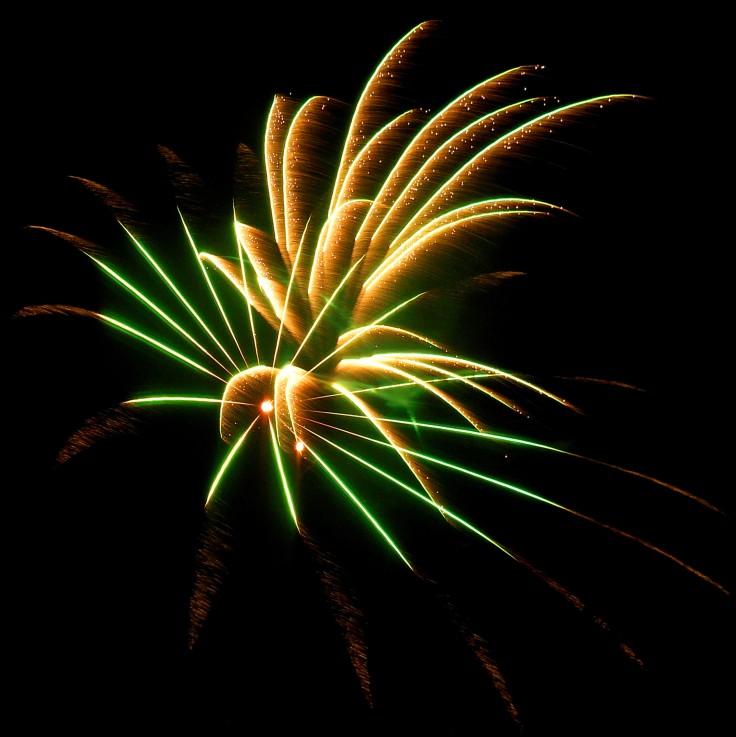 palm fireworks A