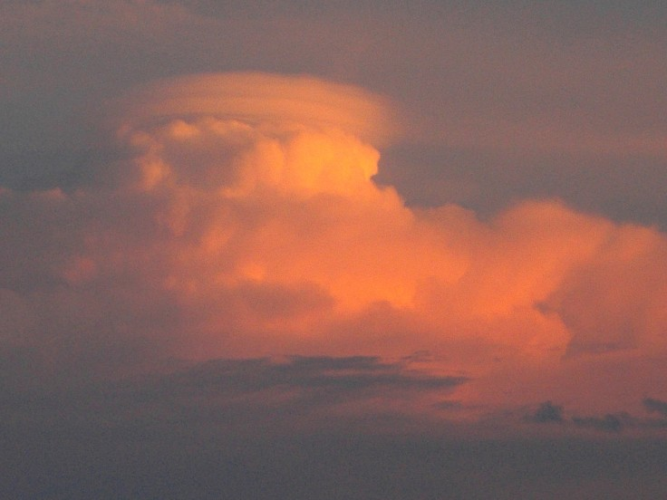 Malabar Cloud B