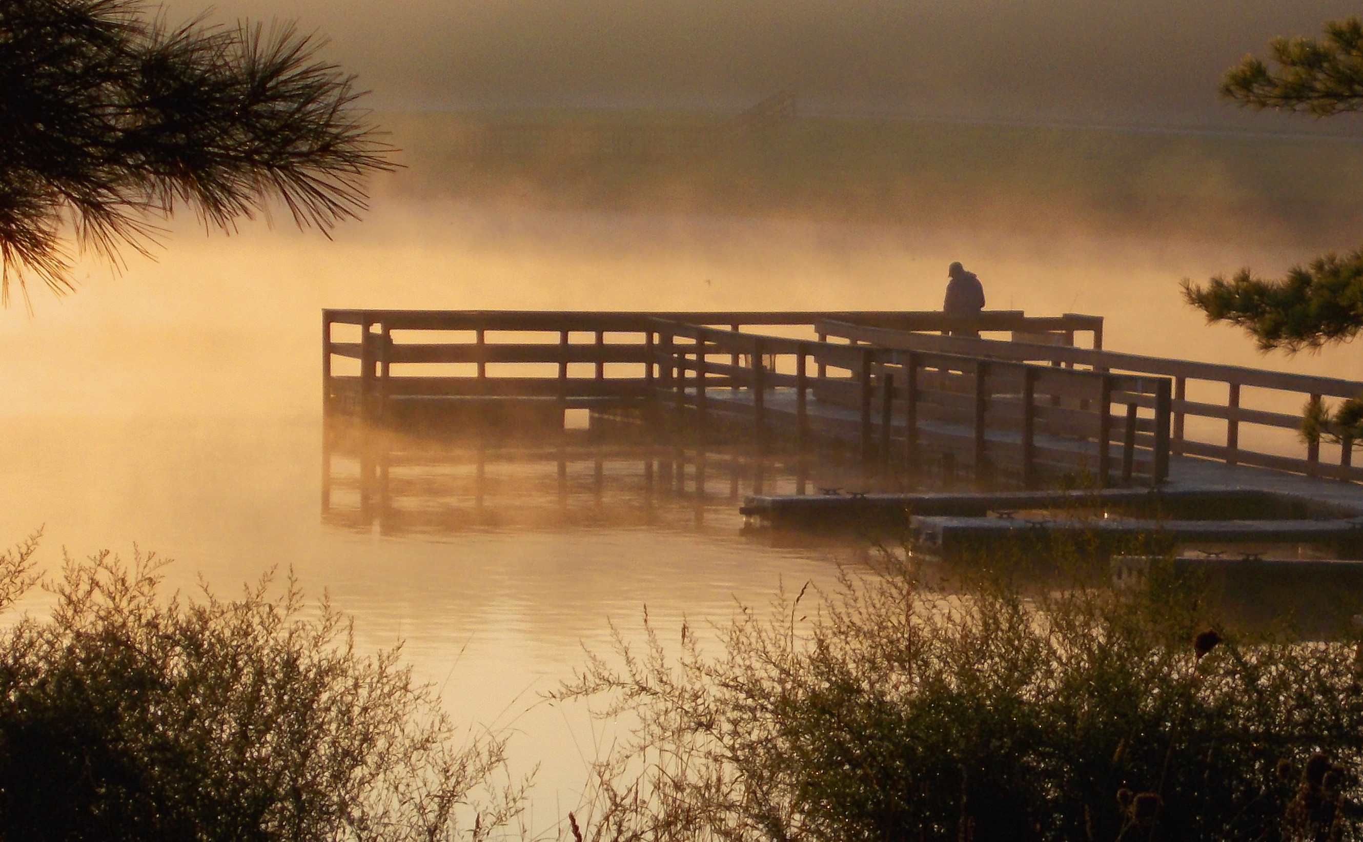 Morning Dock Silvercreek