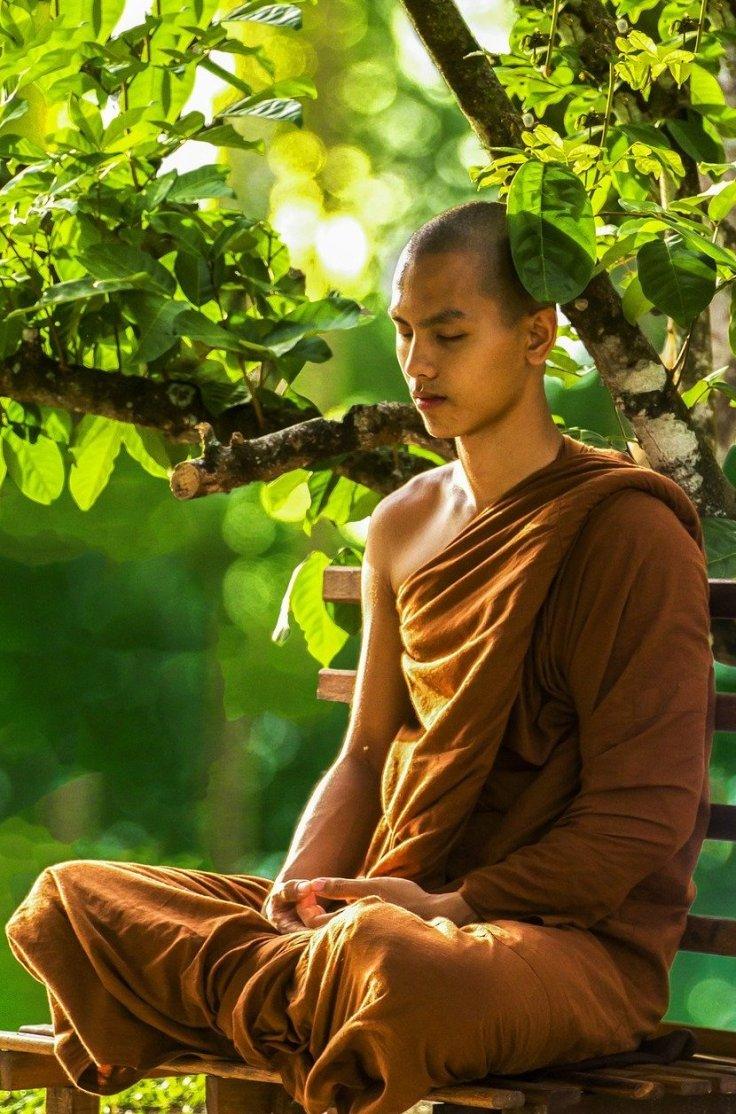 Monk Meditation under Tree