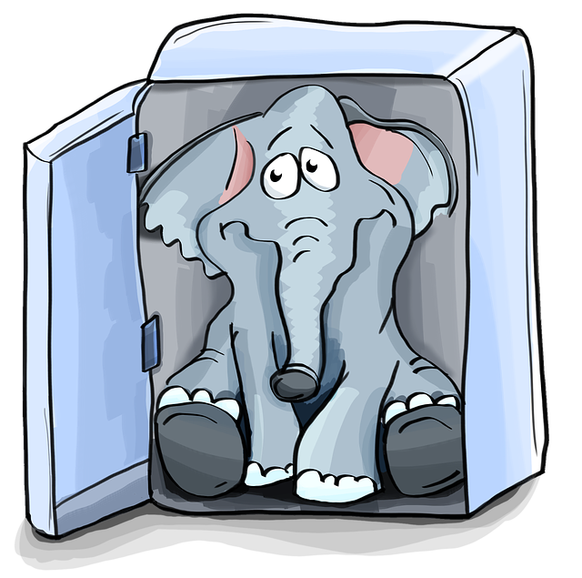 Elephant in Refrig