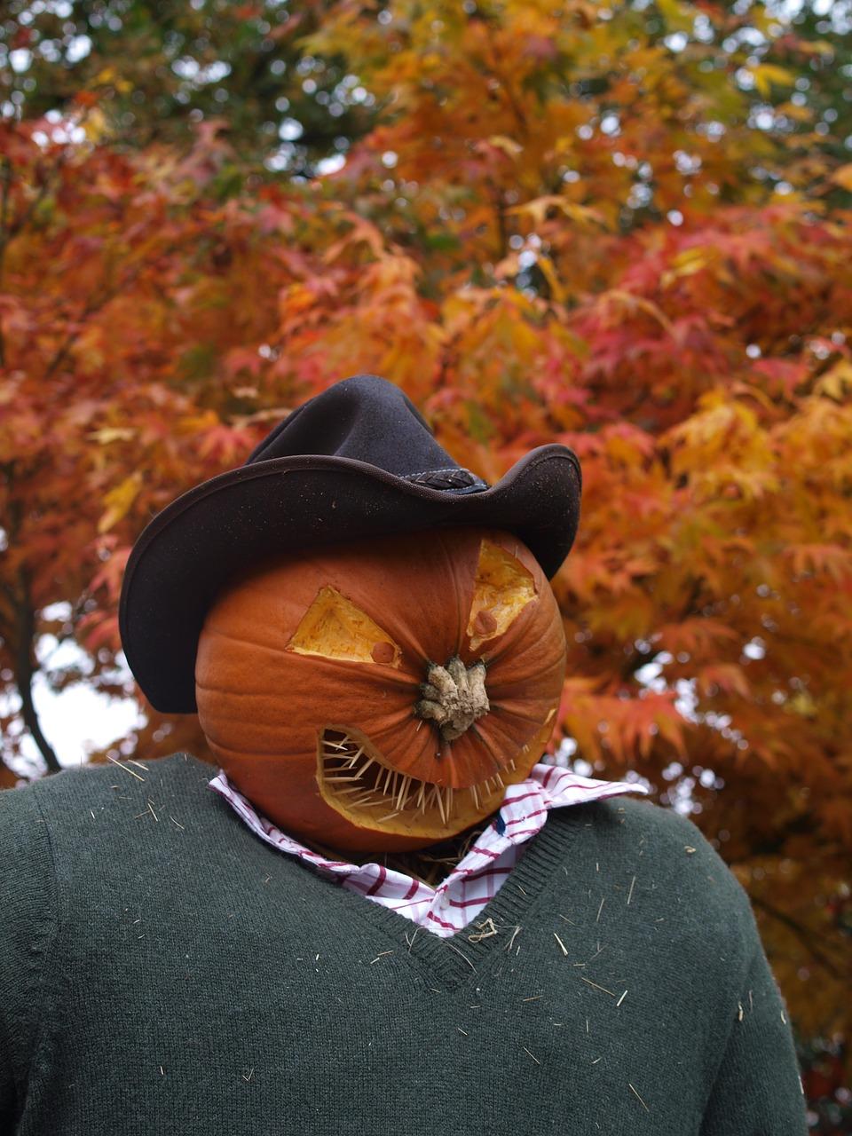 Scarecrow Stray Man Evil